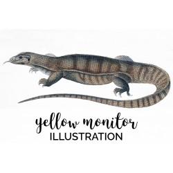 Yellow Monitor