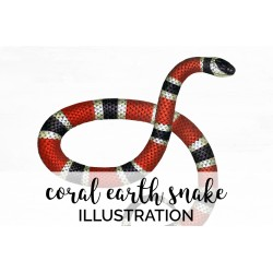 Coral Earth Snake