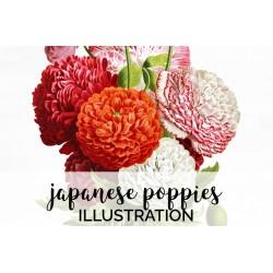 Japanese Poppies