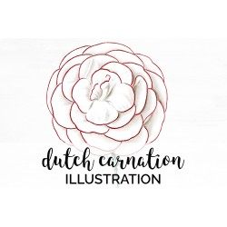 Dutch Carnation