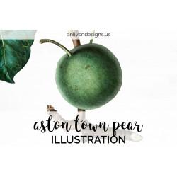 Aston Town Pear