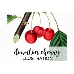 Downton Cherry
