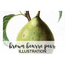 Brown Beurre Pear