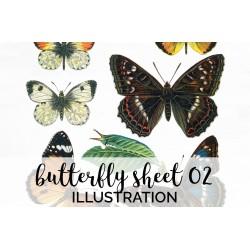 Butterfly Sheet 02