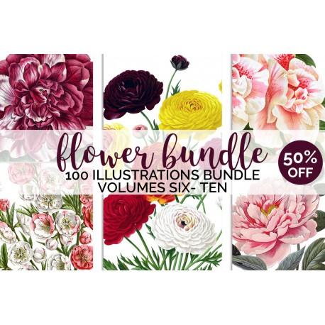 Watercolor Flowers Set 02 (qty 100)