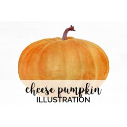 Cheese Pumpkin