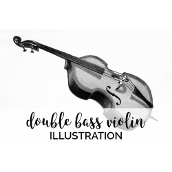 Double Bass Violin