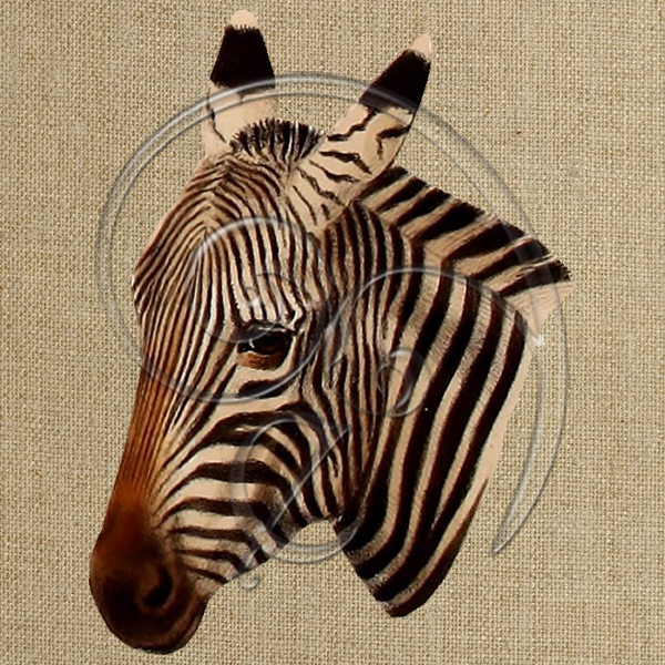zebra4 (free download)