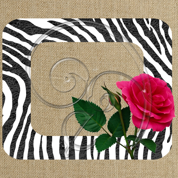 zebra print pink rose (free download)