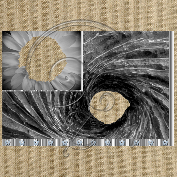 Black and white spiral (free download)