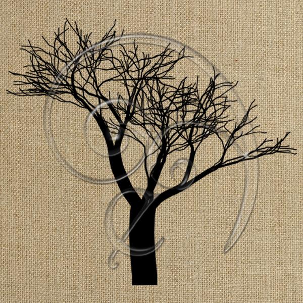 bare tree 8 (free download)