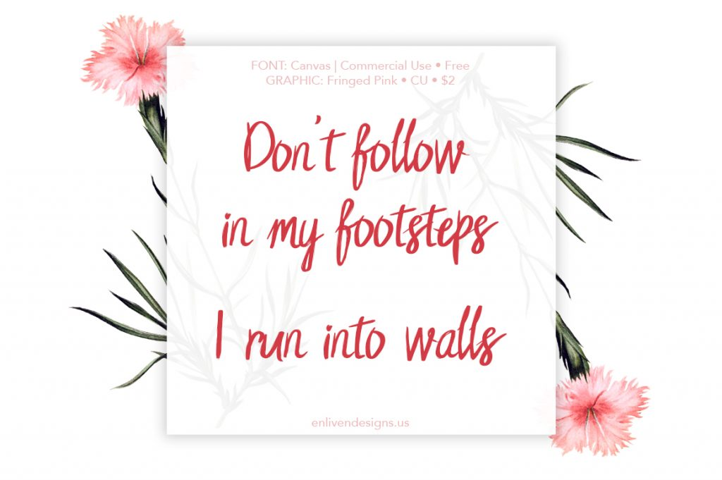 Quote: Don't Follow in my footsteps. I run into walls.