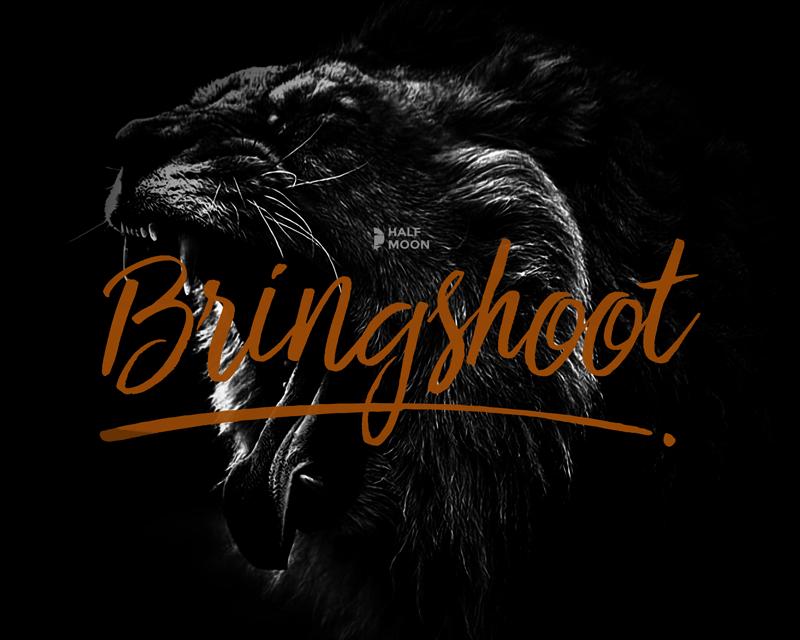 Free Script Font Bringshoot