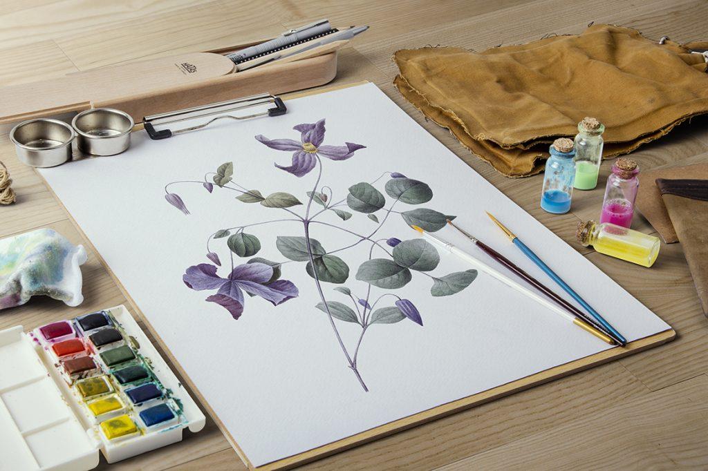 Vintage Flowers: B0003 Purple Clematis Viticella