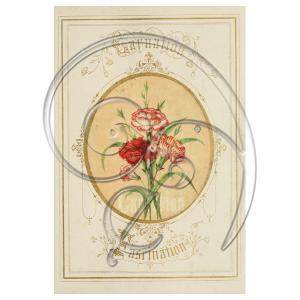 Carnation Vintage Card (free download)